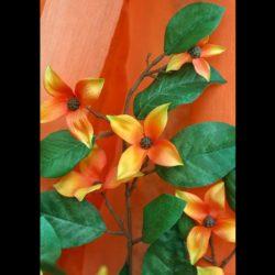 Κλαδί με λουλούδι, πορτοκαλί - κίτρινο